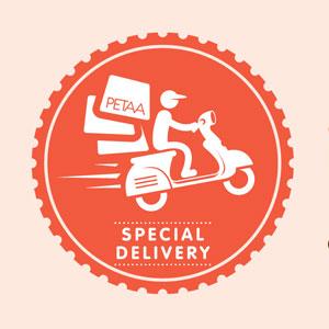 Special Delivery: Talk