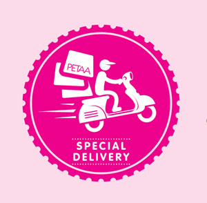 Special Delivery: Author