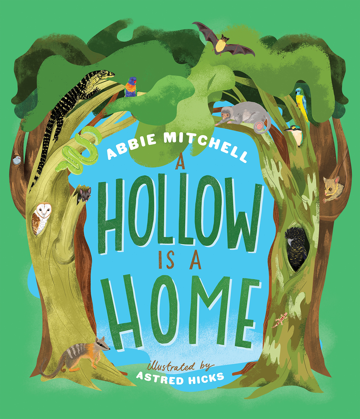 A Hollow is a Home, book cover